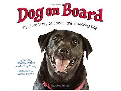 Dog on Board: The True Story of Eclipse, the Bus-Riding Dog