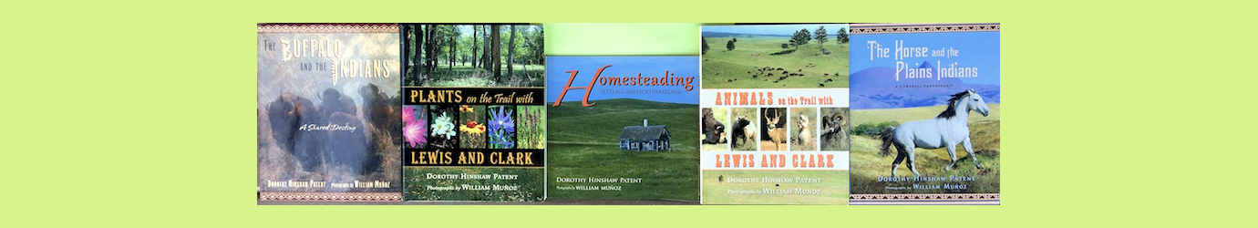 Homesteading: Settling America's Heartland