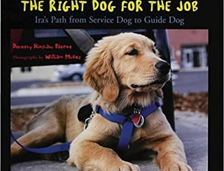 The Right Dog for the Job: Irah's Path from Service Dog to Guide Dog